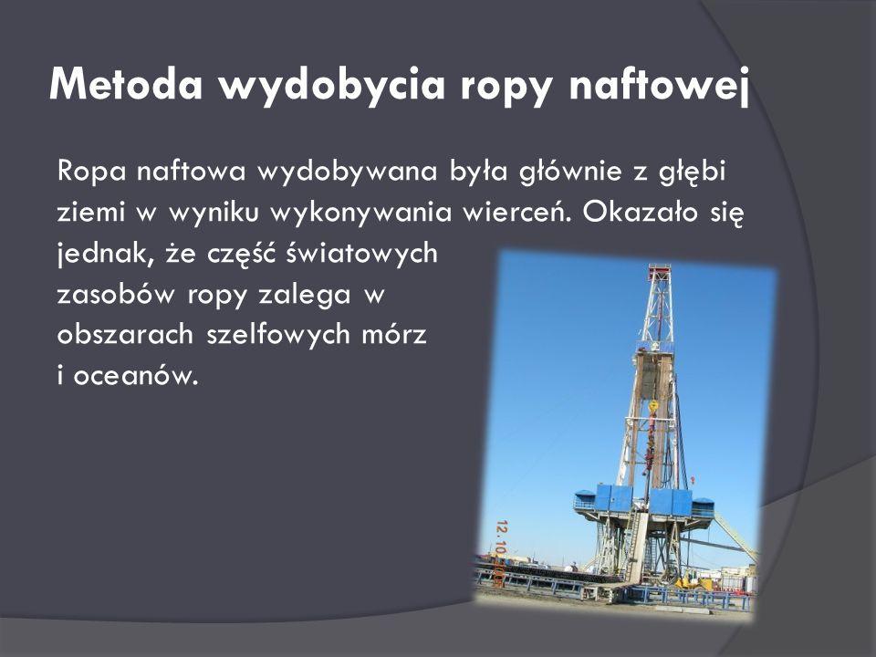 Pracował w Zakładach Górniczych w Suchedniowie Królestwa Polskiego oraz w Zakładach Hutniczych w Mroczkowie, gdzie zajmował się eksploatacją i moderni