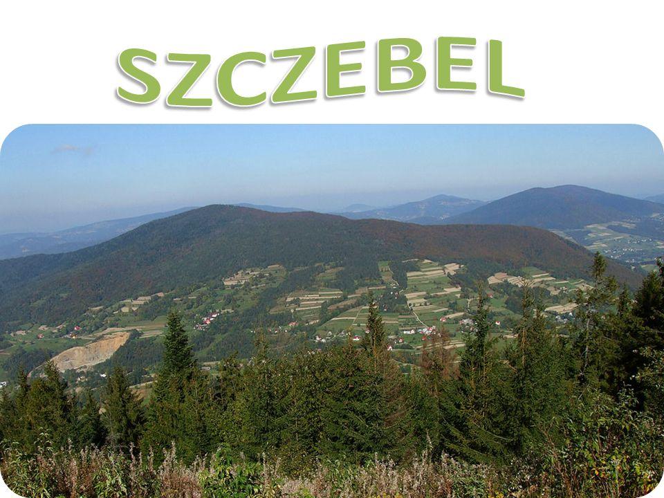 Lubień - największa w gminie wieś letniskowa, położona 350 m n.p.m., w dolinie rzeki Raby i jej dopływu - potoku Lubieńka, otoczona wzniesieniami Beskidu Wyspowego; od pd.wsch.