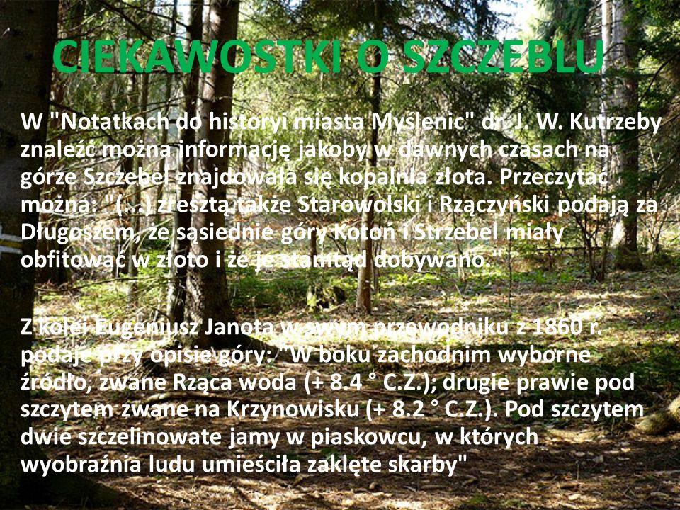 NAZWA SZCZEBEL Nazywany był dawniej również Strzeblem; pod taką nazwą w latach 1830-37 opisywany był przez Albrechta Sydowa, Ludwika Zejsznera, wspomnianego Eugeniusza Janotę czy Marię Steczkowską.