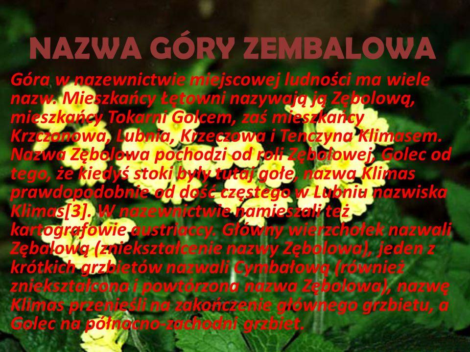 GÓRA ZEMBALOWA Zembalowa lub Zębolowa– rozległy szczyt (859 m) oraz masyw górski, który według Jerzego Kondrackiego znajduje się w Beskidzie Wyspowym.