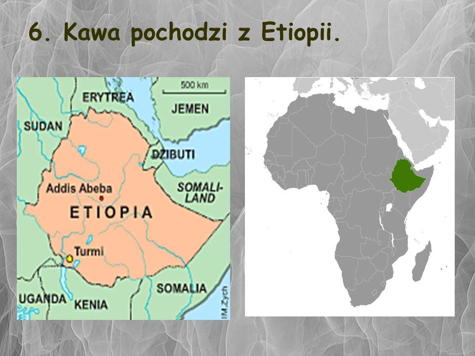 6. Kawa pochodzi z Etiopii.