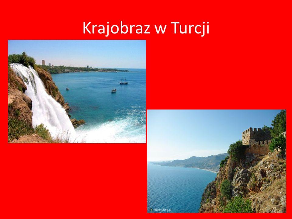 Turcy Turcy znani są z gościnności i życzliwego traktowania przedstawicieli innych kultur.