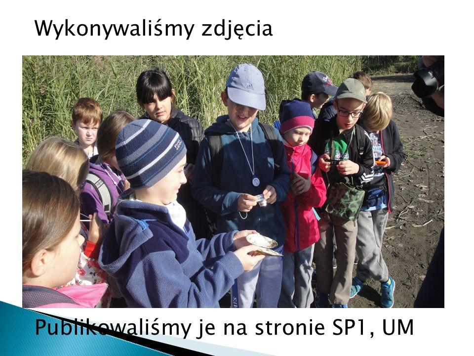 """Stworzyli prezentacje w programie Power Point: """"Barwy przyrody Siemianowic Śląskich i okolic ."""