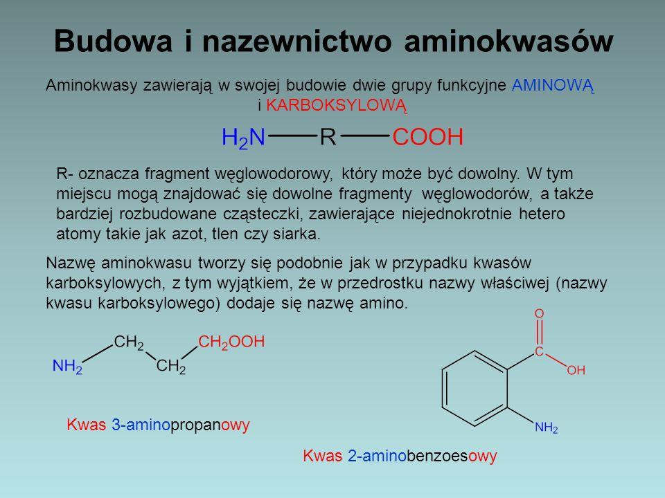 Budowa i nazewnictwo aminokwasów Aminokwasy zawierają w swojej budowie dwie grupy funkcyjne AMINOWĄ i KARBOKSYLOWĄ R- oznacza fragment węglowodorowy,