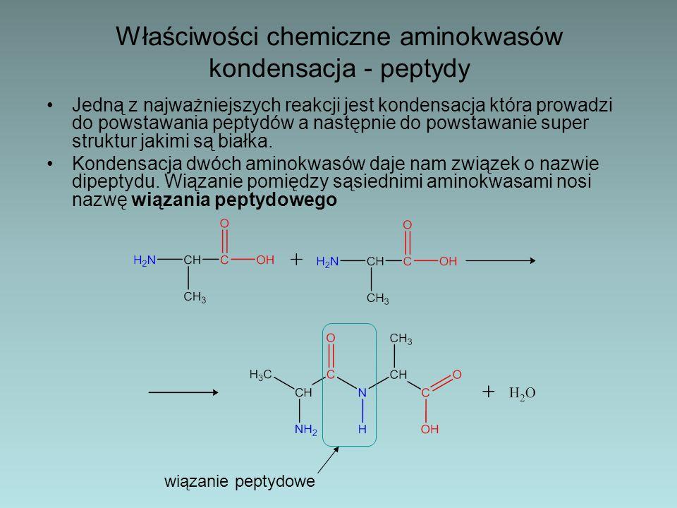 Denaturacja białek – Pod wpływem wielu czynników chemicznych takich jak sole metali ciężkich (Pb, Cd, Hg), mocnych kwasów, reaktywnych związków organicznych (np.