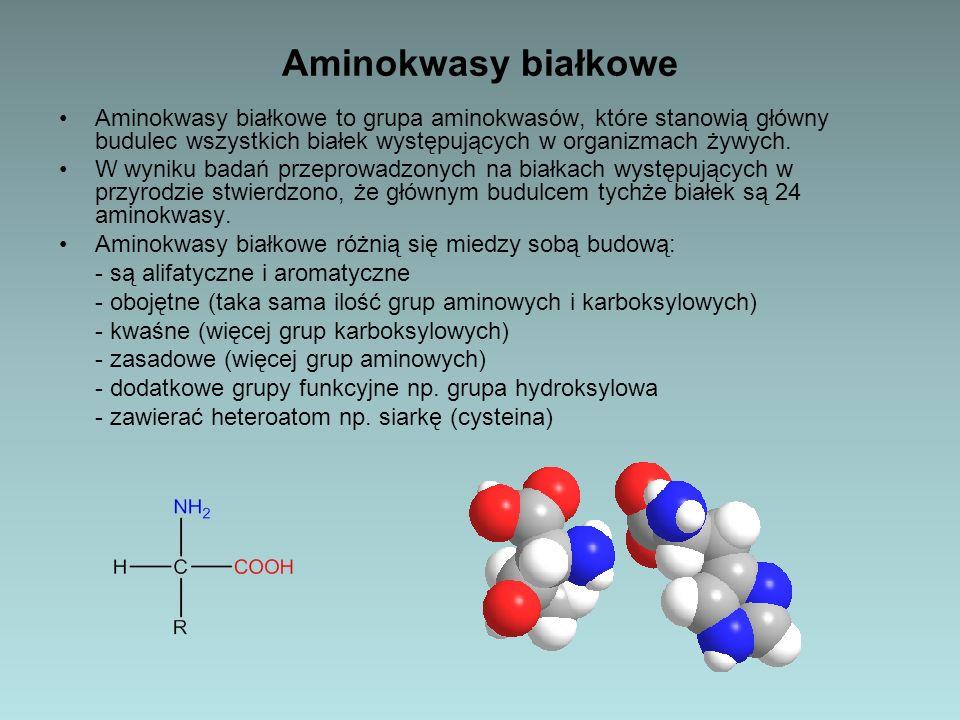 Aminokwasy białkowe Aminokwasy białkowe to grupa aminokwasów, które stanowią główny budulec wszystkich białek występujących w organizmach żywych. W wy