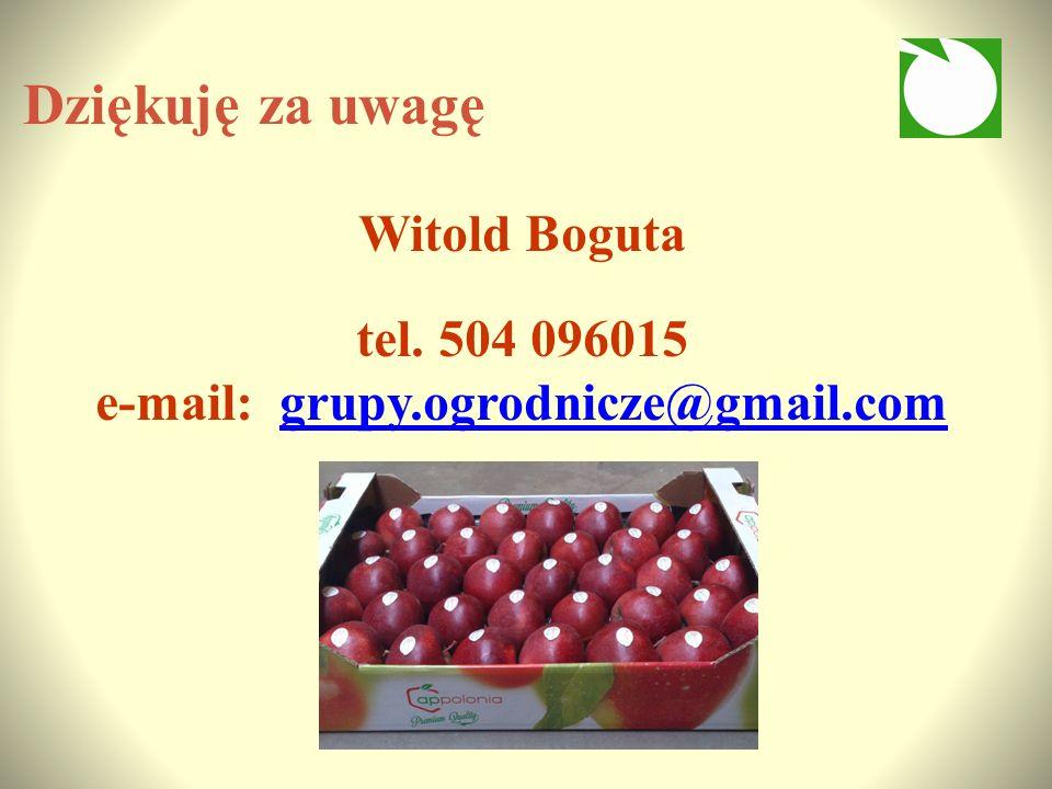 Dziękuję za uwagę Witold Boguta tel.