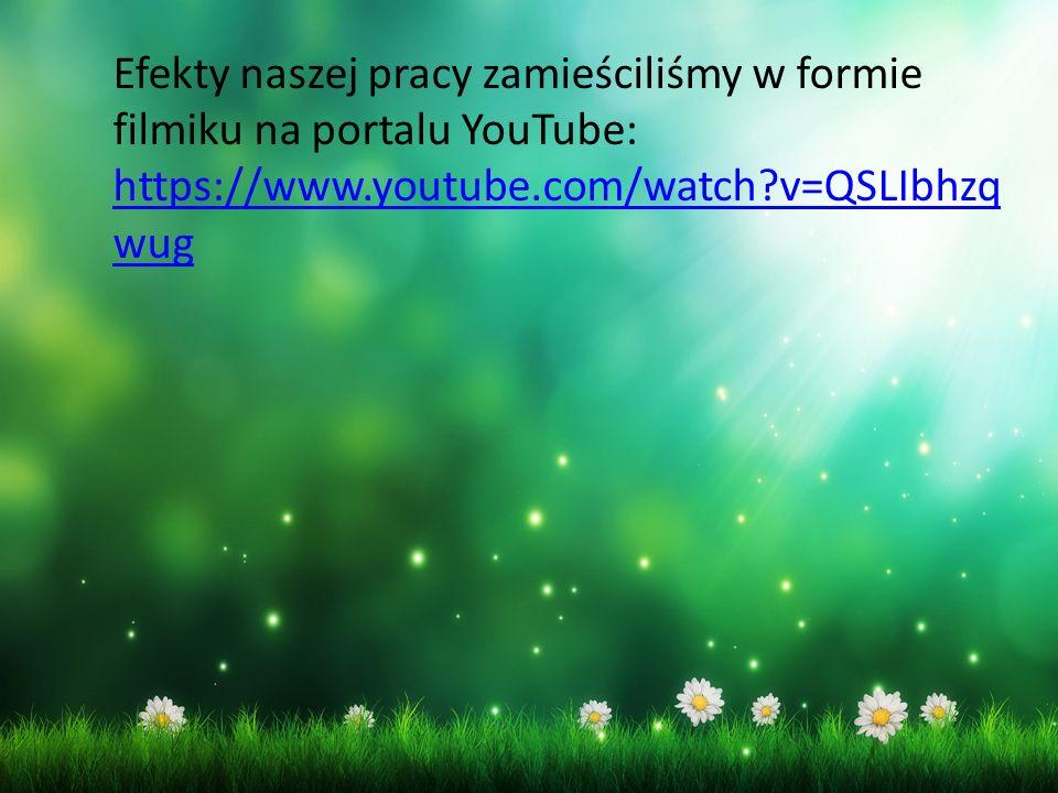Efekty naszej pracy zamieściliśmy w formie filmiku na portalu YouTube: https://www.youtube.com/watch v=QSLIbhzq wug https://www.youtube.com/watch v=QSLIbhzq wug
