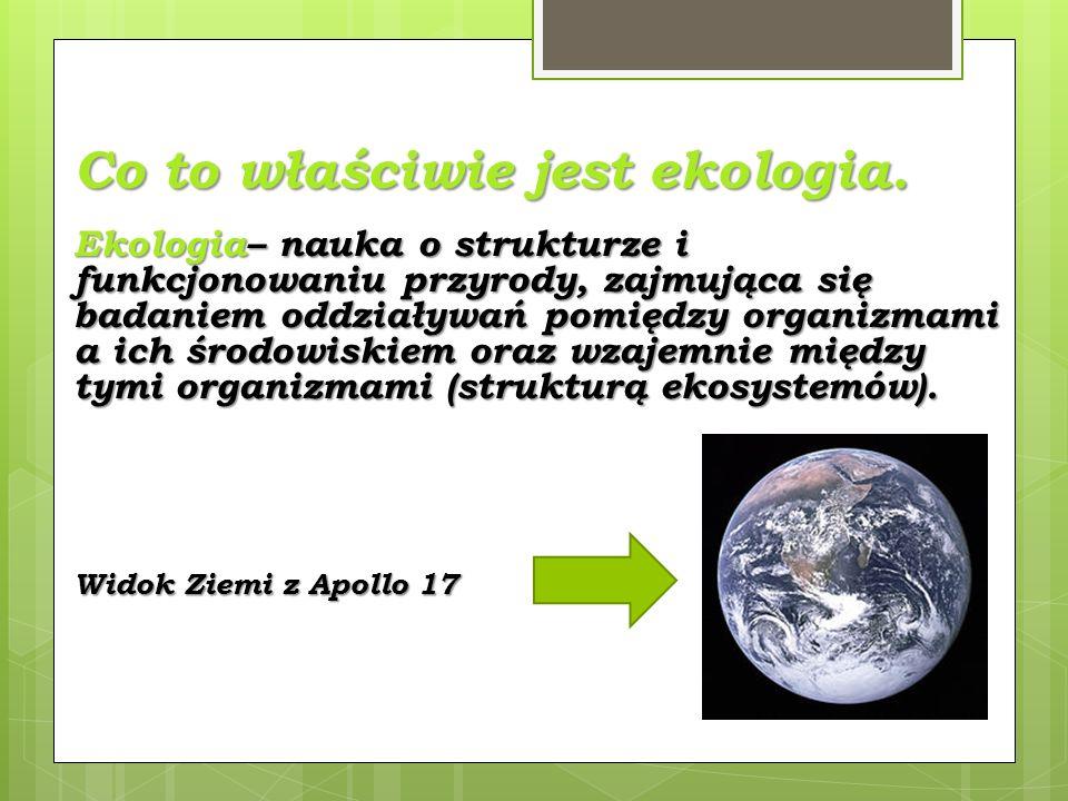 Co to właściwie jest ekologia.
