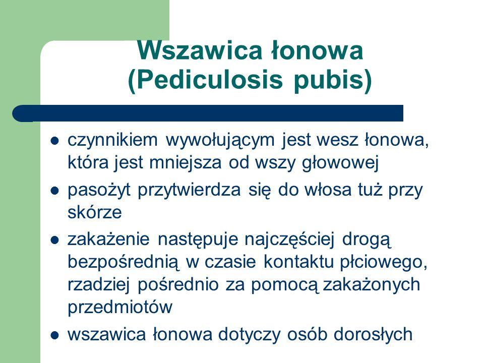 Wszawica łonowa (Pediculosis pubis) czynnikiem wywołującym jest wesz łonowa, która jest mniejsza od wszy głowowej pasożyt przytwierdza się do włosa tu