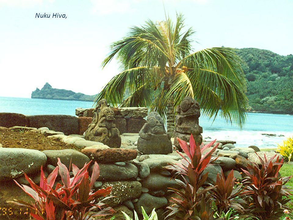 W Papuakeikaha arboretum na Ua Huka po lewej stronie Annona muricata -Flaszowiec