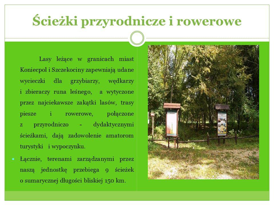 Ścieżki przyrodnicze i rowerowe Lasy leżące w granicach miast Koniecpol i Szczekociny zapewniają udane wycieczki dla grzybiarzy, wędkarzy i zbieraczy