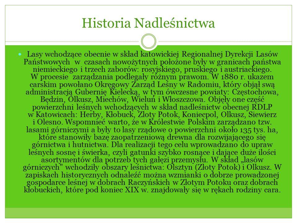 Historia Nadleśnictwa Lasy wchodzące obecnie w skład katowickiej Regionalnej Dyrekcji Lasów Państwowych w czasach nowożytnych położone były w granicach państwa niemieckiego i trzech zaborów: rosyjskiego, pruskiego i austriackiego.