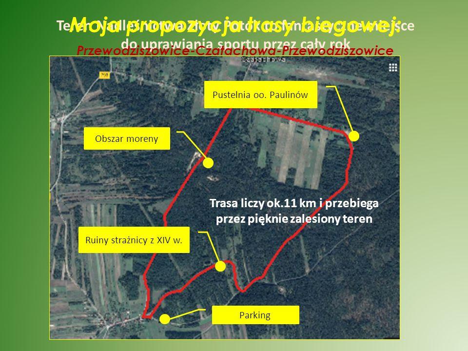 Lasy ochronne Nadleśnictwa Złoty Potok (ha)