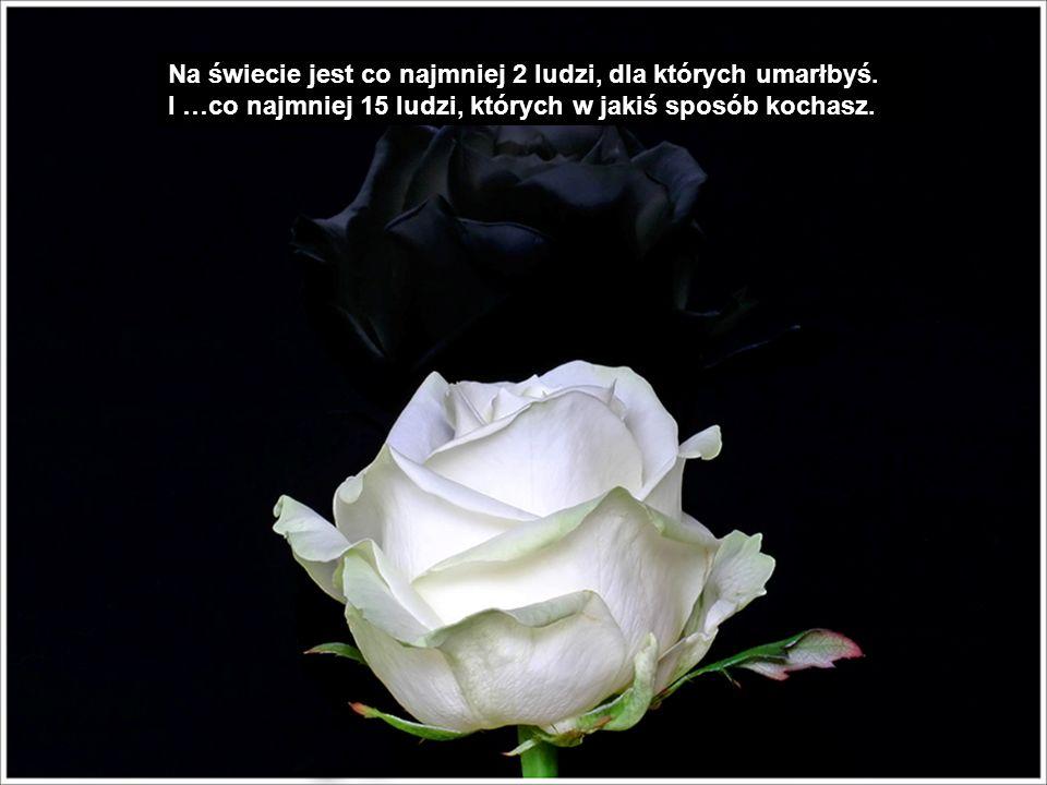 Wolę jedną różę i uprzejme słowo od przyjaciela kiedy jestem obecny, niż cały ładunek samochodowy kiedy mnie nie ma.