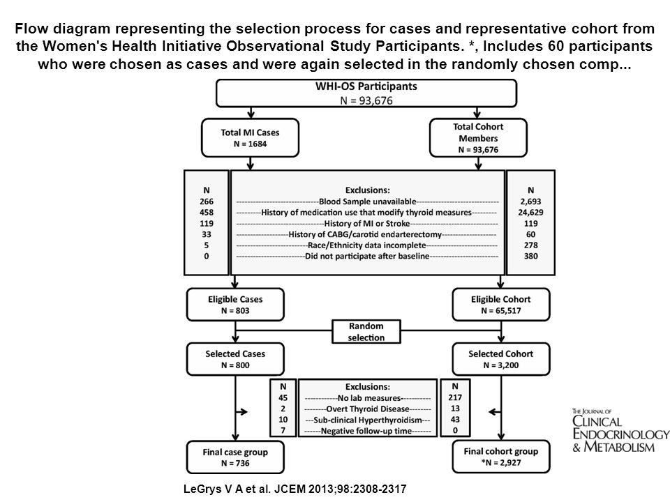 Flow diagram representing the selection process for cases and representative cohort from the Women's Health Initiative Observational Study Participant