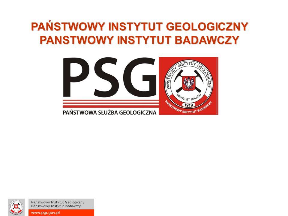 www.pgi.gov.pl Państwowy Instytut Geologiczny Państwowy Instytut Badawczy PAŃSTWOWY INSTYTUT GEOLOGICZNY PANSTWOWY INSTYTUT BADAWCZY