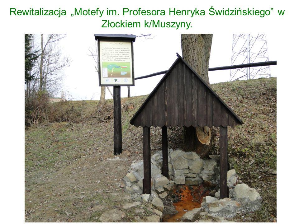 """Rewitalizacja """"Motefy im. Profesora Henryka Świdzińskiego w Złockiem k/Muszyny."""