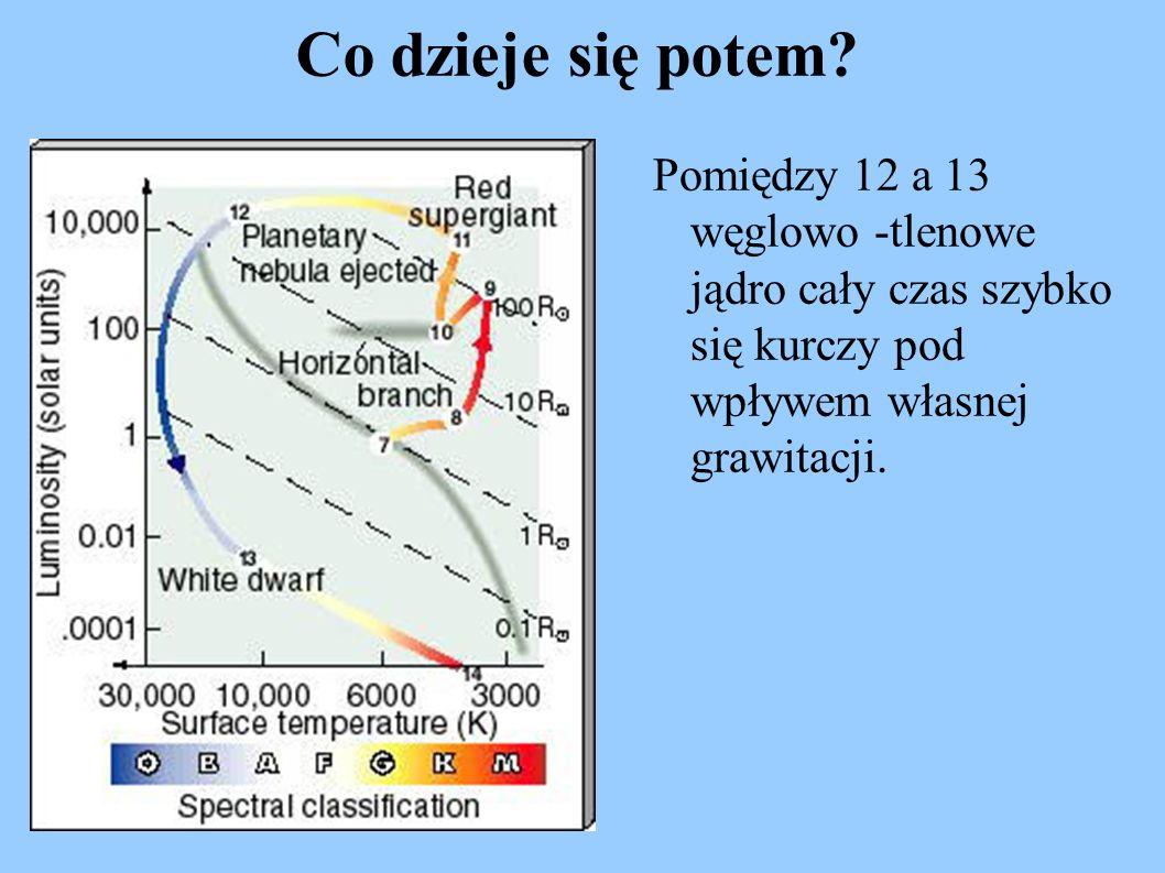 Co dzieje się potem? Pomiędzy 12 a 13 węglowo -tlenowe jądro cały czas szybko się kurczy pod wpływem własnej grawitacji.
