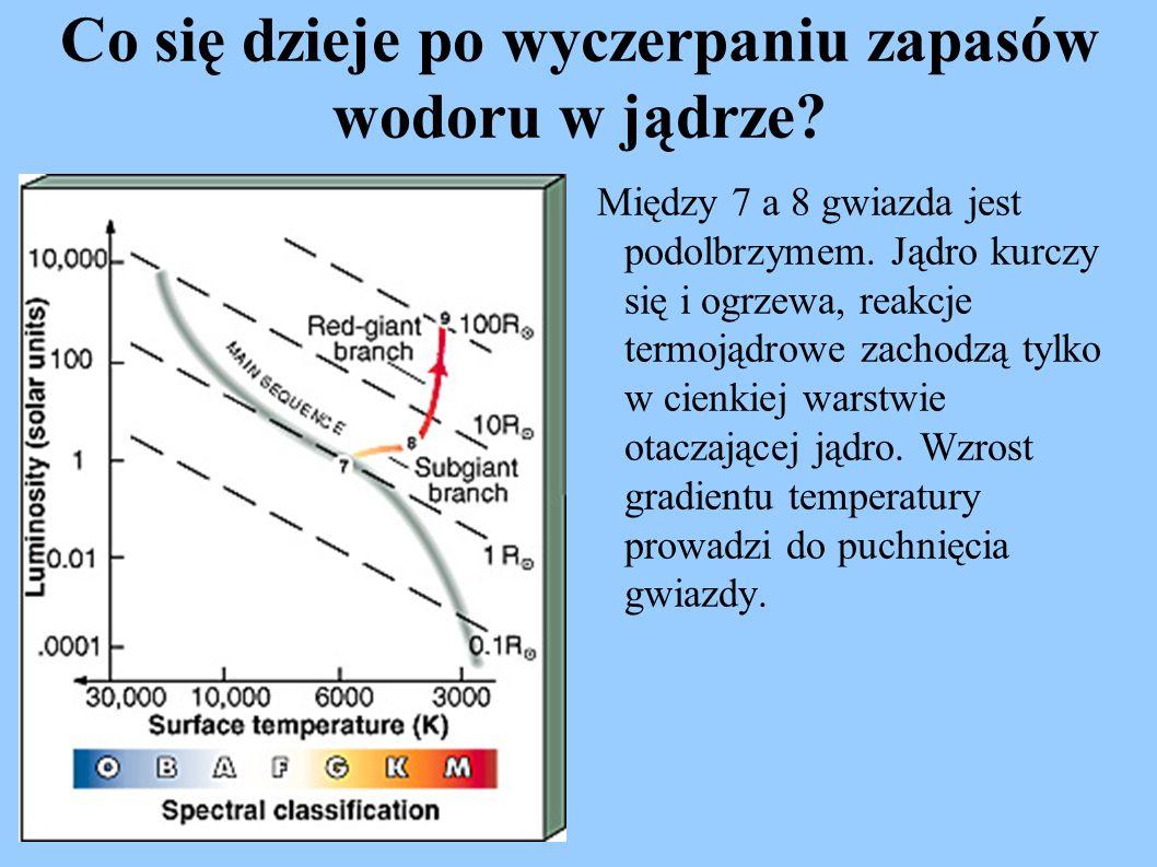 Co się dzieje po wyczerpaniu zapasów wodoru w jądrze? Między 7 a 8 gwiazda jest podolbrzymem. Jądro kurczy się i ogrzewa, reakcje termojądrowe zachodz