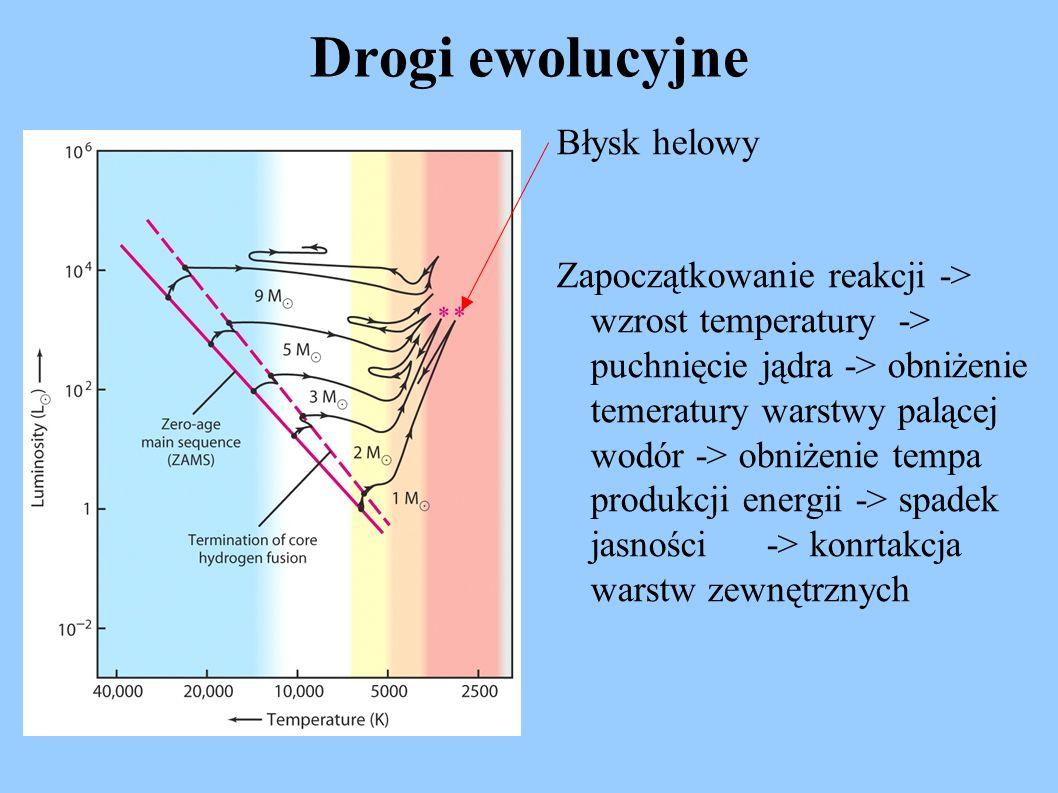 Drogi ewolucyjne Błysk helowy Zapoczątkowanie reakcji -> wzrost temperatury -> puchnięcie jądra -> obniżenie temeratury warstwy palącej wodór -> obniż