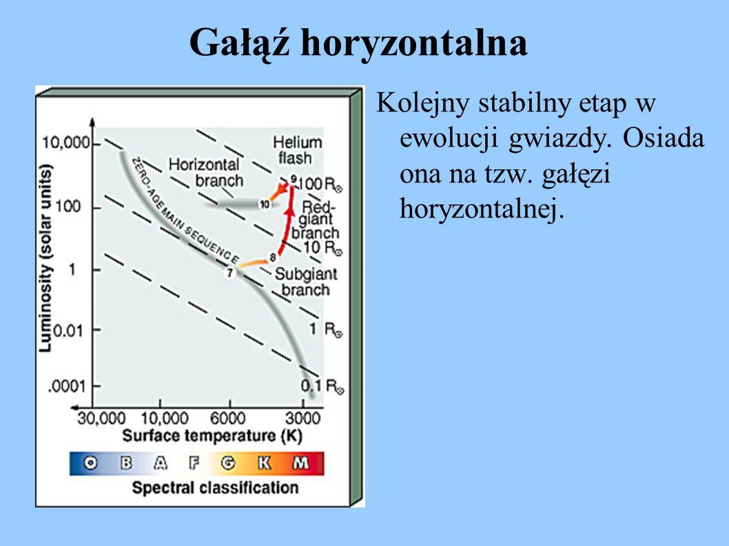 Gałąź horyzontalna Kolejny stabilny etap w ewolucji gwiazdy. Osiada ona na tzw. gałęzi horyzontalnej.
