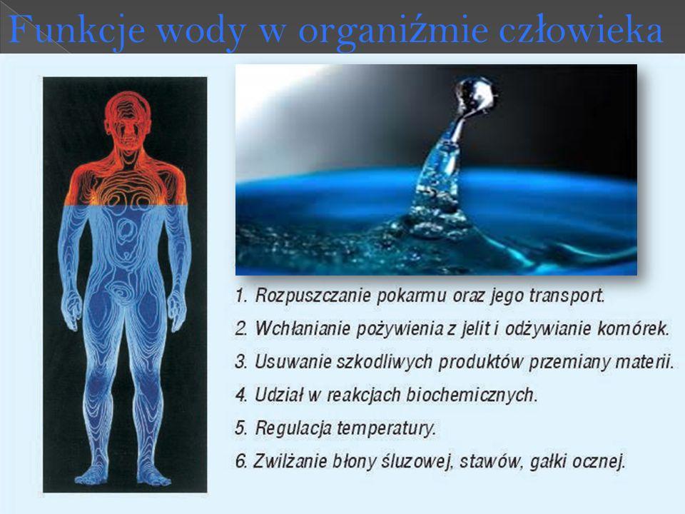 Funkcje wody w organi ź mie cz ł owieka