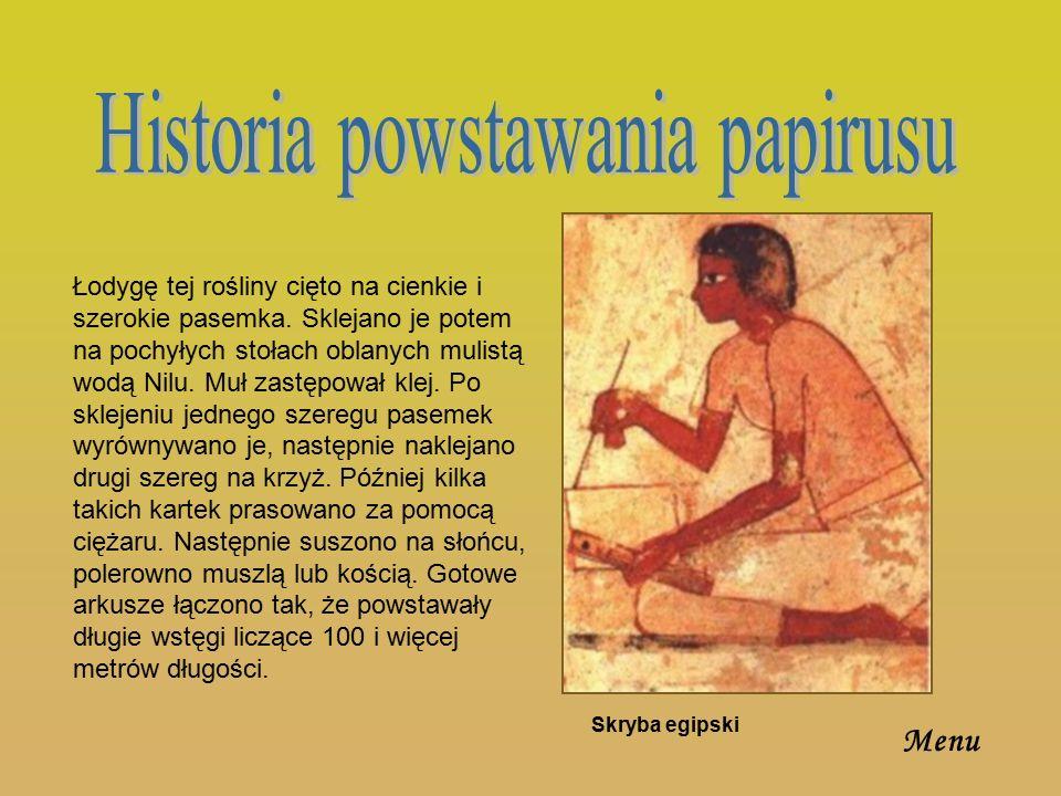 Papirus zwany,,świętym – Egipcjanie pisali na nim swoje święte księgi, był uznawany za najlepszy.,,Papirus Liwii – nazwany od imienia żony cesarza Augusta.,,Papirus Aleksandryjski – pochodzi od miasta w którym znajdowały się największe fabryki papirusu.