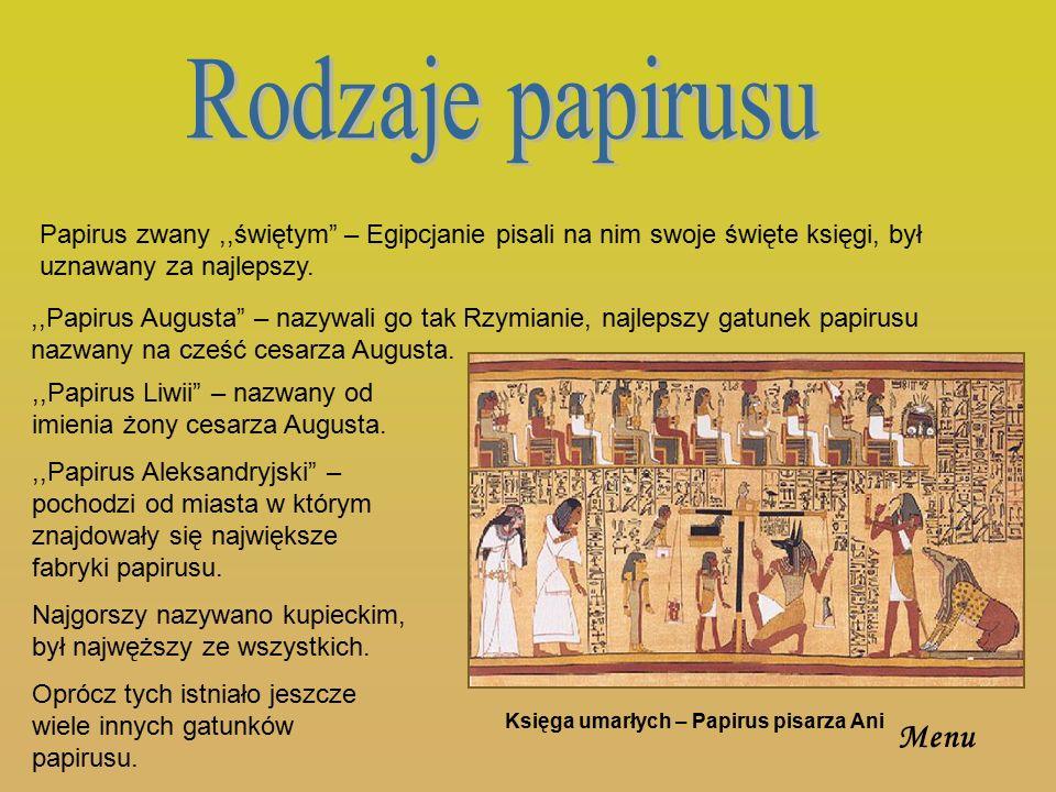 Starożytni Egipcjanie wynaleźli sposób czytania papirusu, który łamał się przy zginaniu.