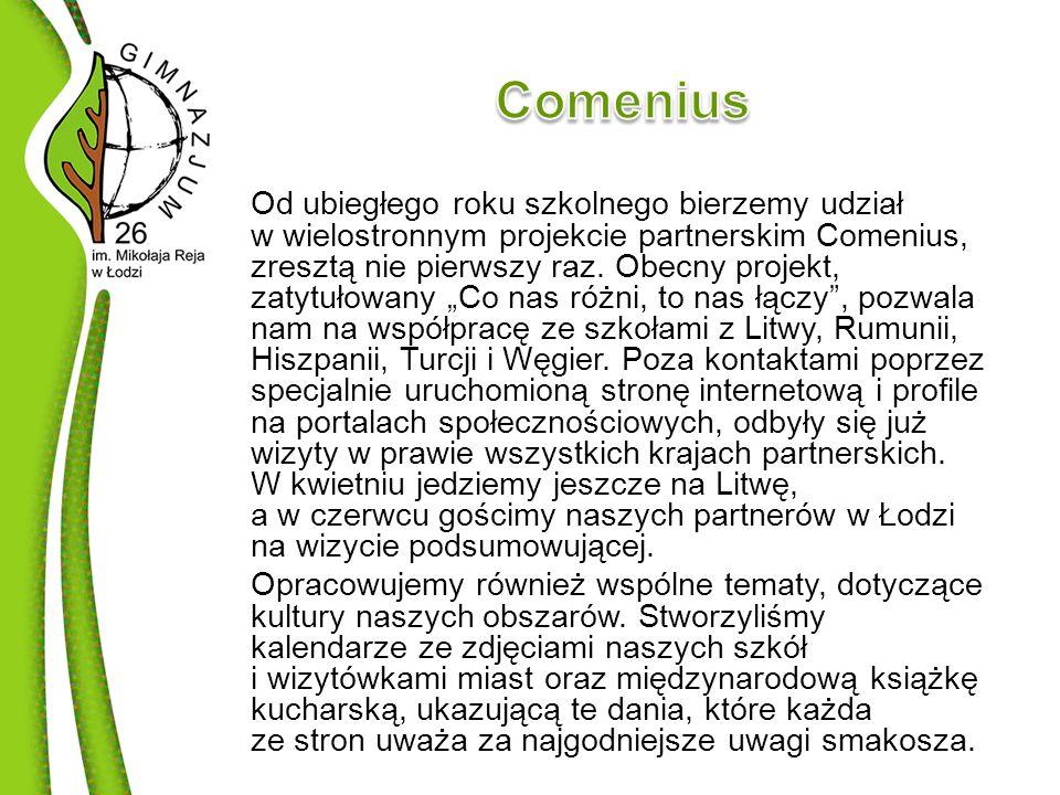 Od ubiegłego roku szkolnego bierzemy udział w wielostronnym projekcie partnerskim Comenius, zresztą nie pierwszy raz.