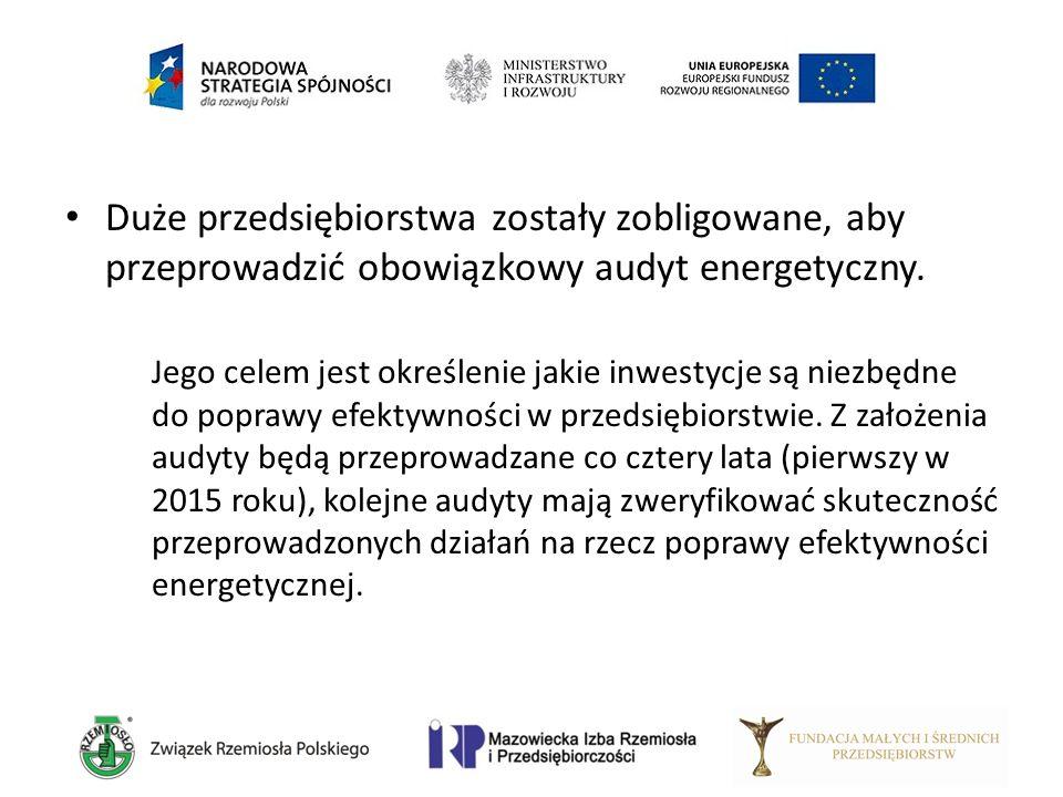 Duże przedsiębiorstwa zostały zobligowane, aby przeprowadzić obowiązkowy audyt energetyczny. Jego celem jest określenie jakie inwestycje są niezbędne