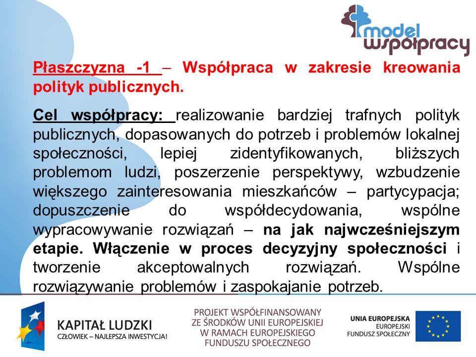 Płaszczyzna -1 – Współpraca w zakresie kreowania polityk publicznych.
