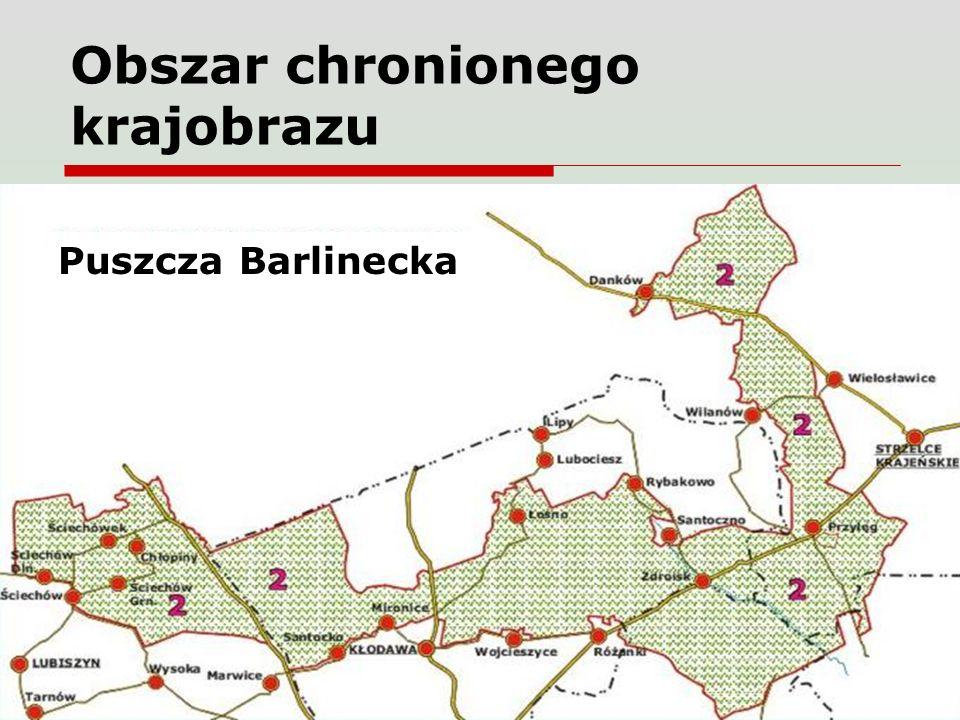 Obszar chronionego krajobrazu Puszcza Barlinecka