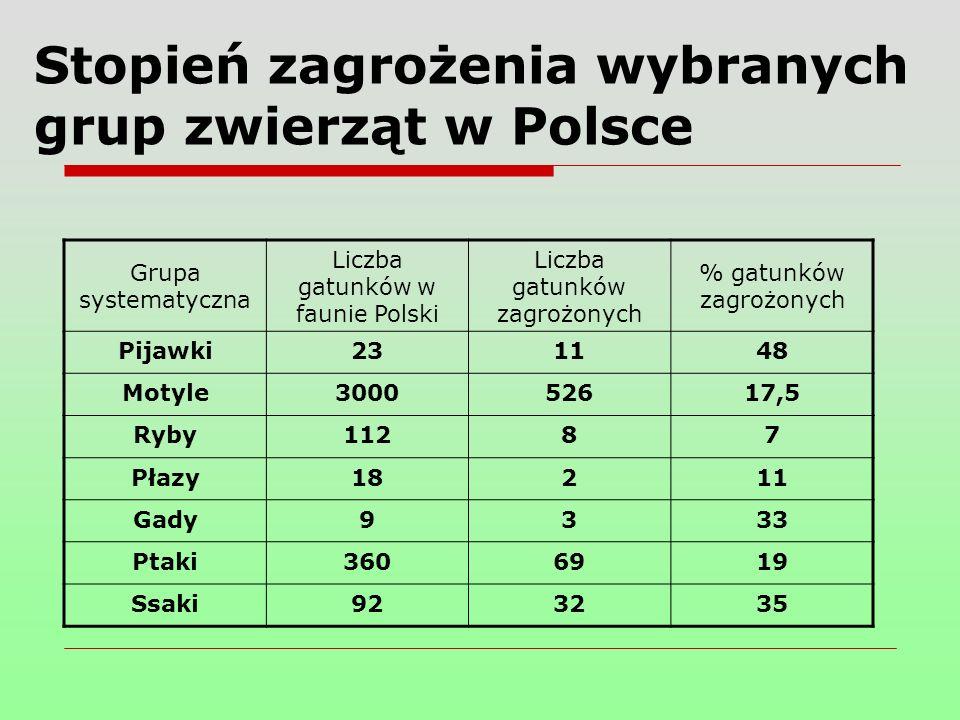 Stopień zagrożenia wybranych grup zwierząt w Polsce Grupa systematyczna Liczba gatunków w faunie Polski Liczba gatunków zagrożonych % gatunków zagrożonych Pijawki231148 Motyle300052617,5 Ryby11287 Płazy18211 Gady9333 Ptaki3606919 Ssaki923235