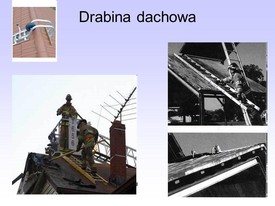 Drabina dachowa