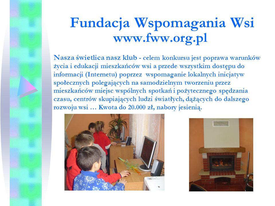 Fundacja Wspomagania Wsi www.fww.org.pl Pożyteczne wakacje i Pożyteczne ferie – projekty umożliwiające dzieciom i młodzieży atrakcyjne, bezpieczne i pożyteczne spędzenie czasu wolnego, zaangażowanie młodych ludzi do prac na rzecz poprawy estetyki wsi - 3.000 zł, termin ok.