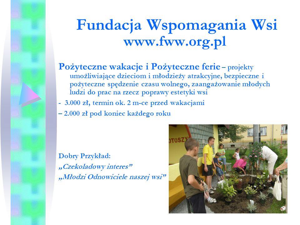 Fundusz Inicjatyw Obywatelskich www.pozytek.gov.pl Małe projekty od 10.000 do 40.000 zł bez wymaganego wkładu własnego finansowego, zakresy tematyczne: -Aktywni i świadomi obywatele, aktywne wspólnoty lokalne, m.in.