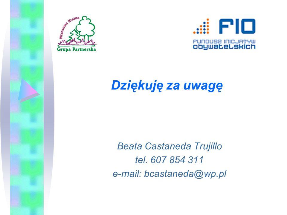 Dziękuję za uwagę Beata Castaneda Trujillo tel. 607 854 311 e-mail: bcastaneda@wp.pl