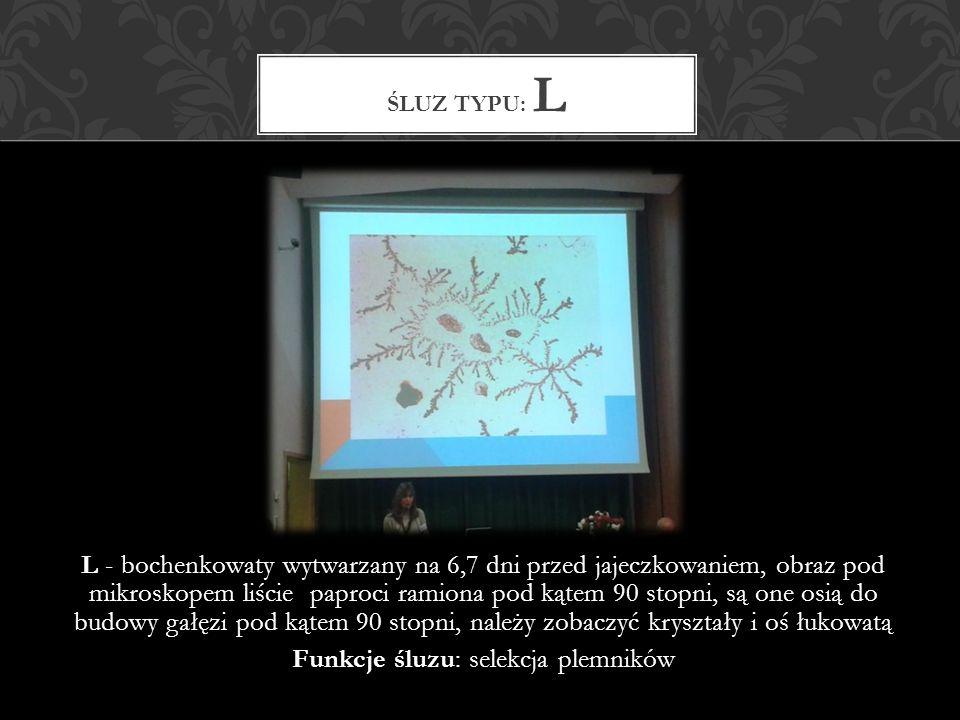 L - bochenkowaty wytwarzany na 6,7 dni przed jajeczkowaniem, obraz pod mikroskopem liście paproci ramiona pod kątem 90 stopni, są one osią do budowy gałęzi pod kątem 90 stopni, należy zobaczyć kryształy i oś łukowatą Funkcje śluzu: selekcja plemników ŚLUZ TYPU: L