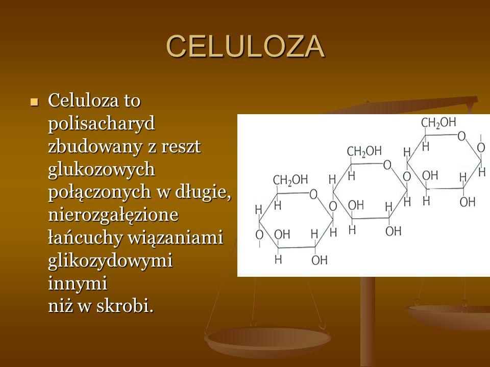 CELULOZA Celuloza to polisacharyd zbudowany z reszt glukozowych połączonych w długie, nierozgałęzione łańcuchy wiązaniami glikozydowymi innymi niż w skrobi.