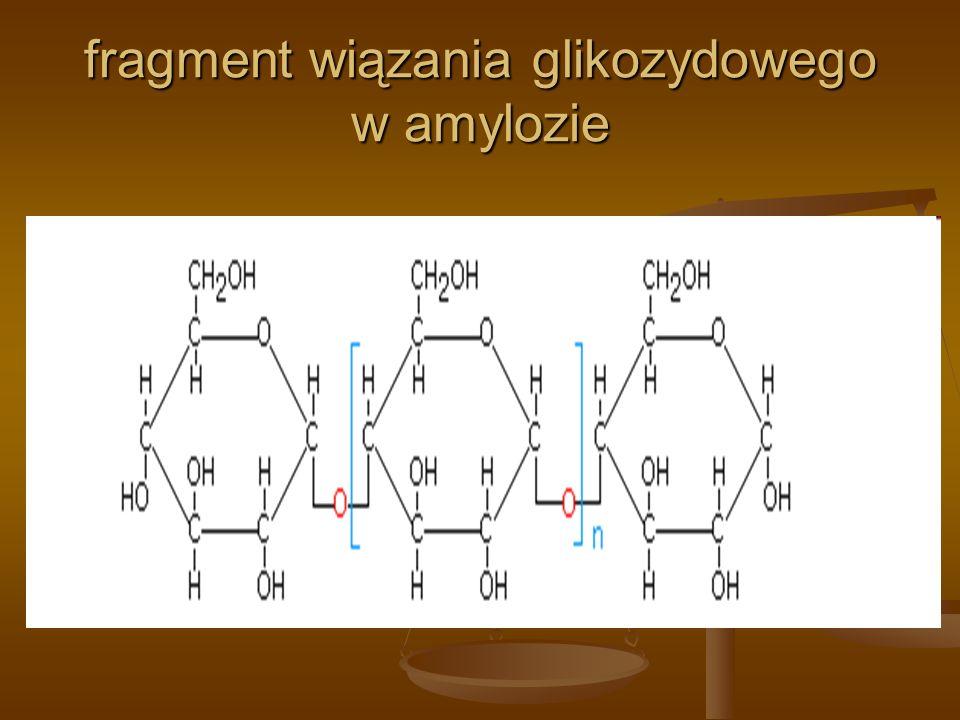 fragment wiązania glikozydowego w amylozie
