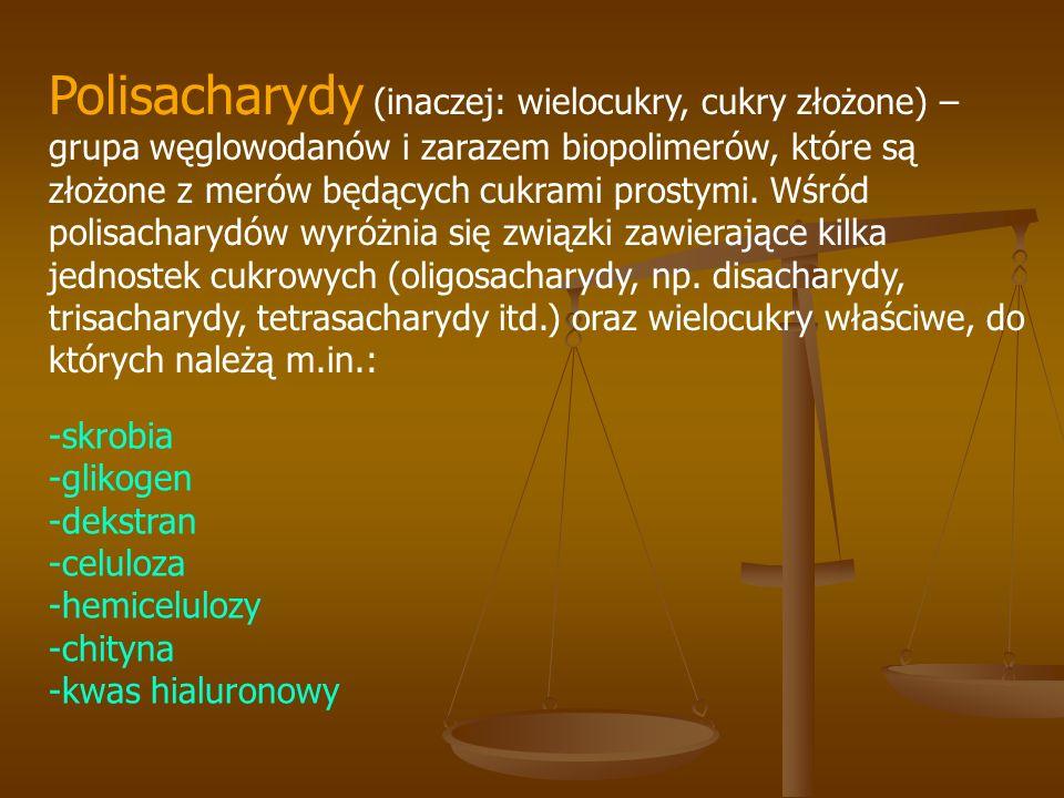 Polisacharydy (inaczej: wielocukry, cukry złożone) – grupa węglowodanów i zarazem biopolimerów, które są złożone z merów będących cukrami prostymi. Wś