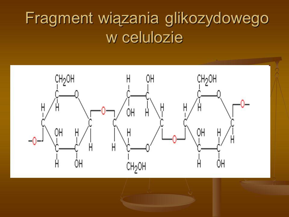 Fragment wiązania glikozydowego w celulozie Fragment wiązania glikozydowego w celulozie