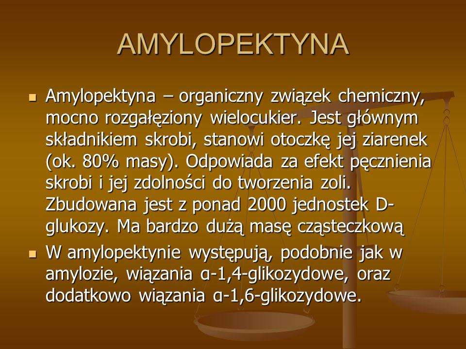 AMYLOPEKTYNA Amylopektyna – organiczny związek chemiczny, mocno rozgałęziony wielocukier. Jest głównym składnikiem skrobi, stanowi otoczkę jej ziarene