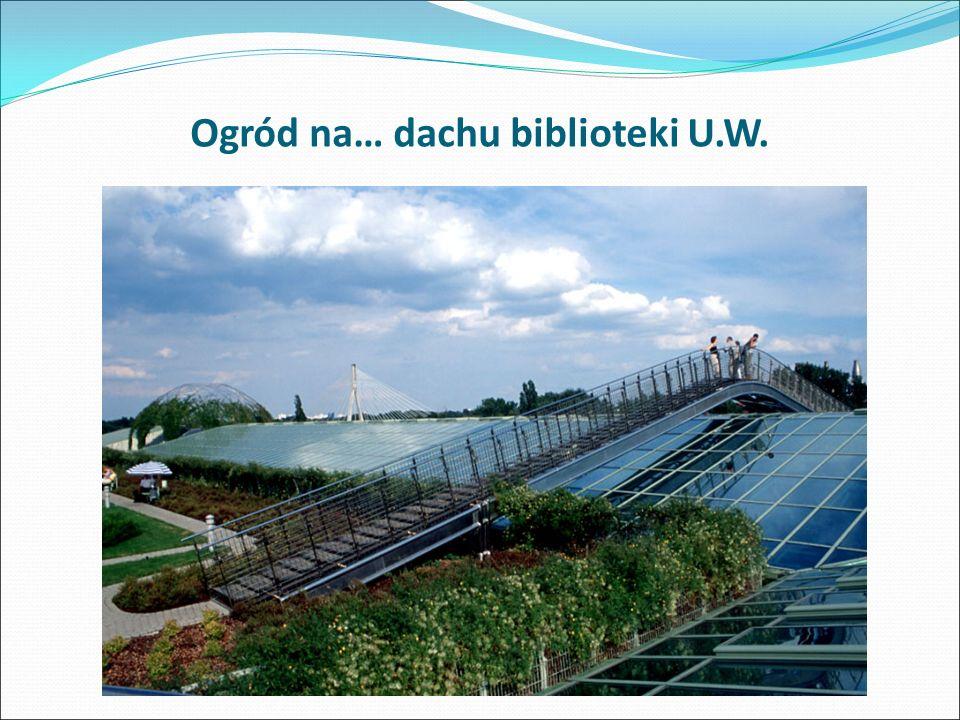 Ogród na… dachu biblioteki U.W.
