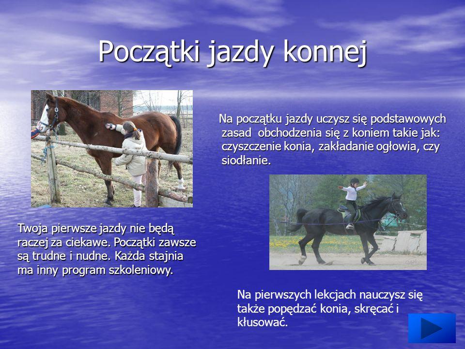 Początki jazdy konnej Na początku jazdy uczysz się podstawowych zasad obchodzenia się z koniem takie jak: czyszczenie konia, zakładanie ogłowia, czy siodłanie.