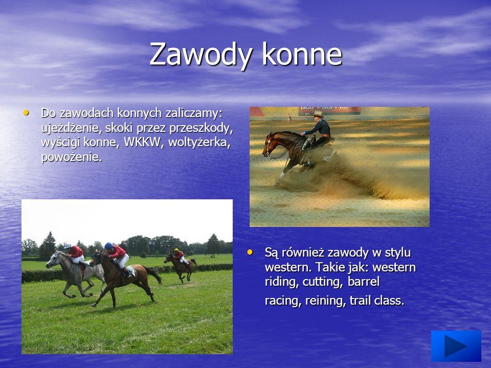 Zawody konne Do zawodach konnych zaliczamy: ujeżdżenie, skoki przez przeszkody, wyścigi konne, WKKW, woltyżerka, powożenie.