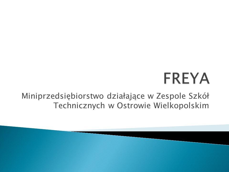 Miniprzedsiębiorstwo działające w Zespole Szkół Technicznych w Ostrowie Wielkopolskim