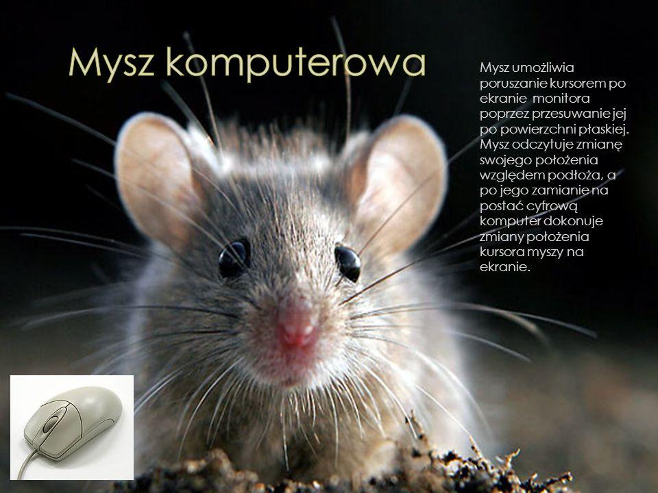 Mysz umożliwia poruszanie kursorem po ekranie monitora poprzez przesuwanie jej po powierzchni płaskiej.