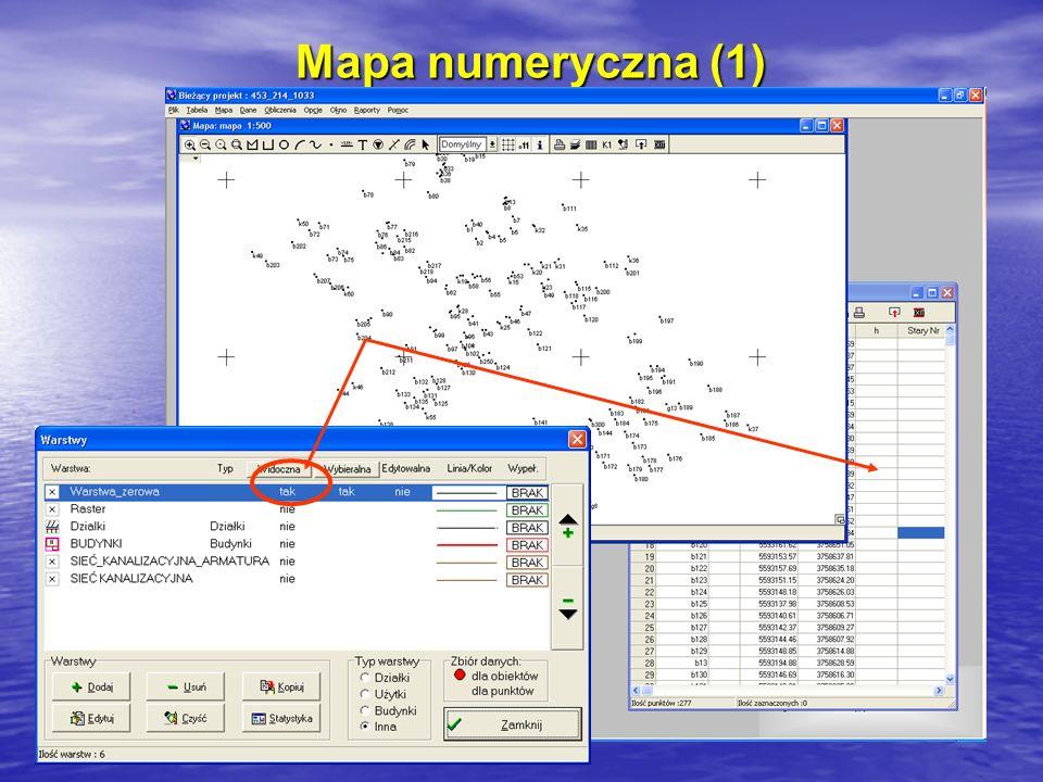 Mapa numeryczna (1)